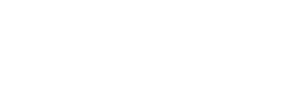 George Street Self Storage Logo in white